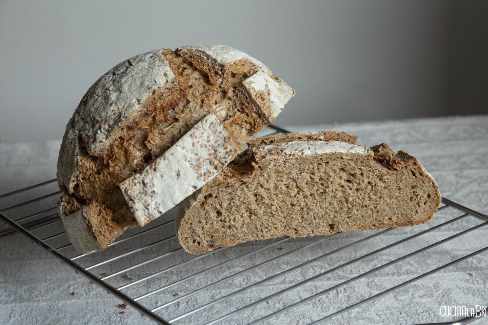 pane con lievito madre di segale e semi